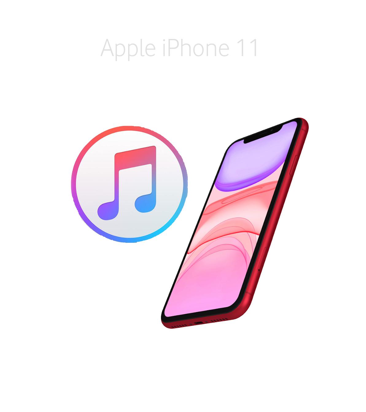 Mjukvara/Återställa iPhone 11