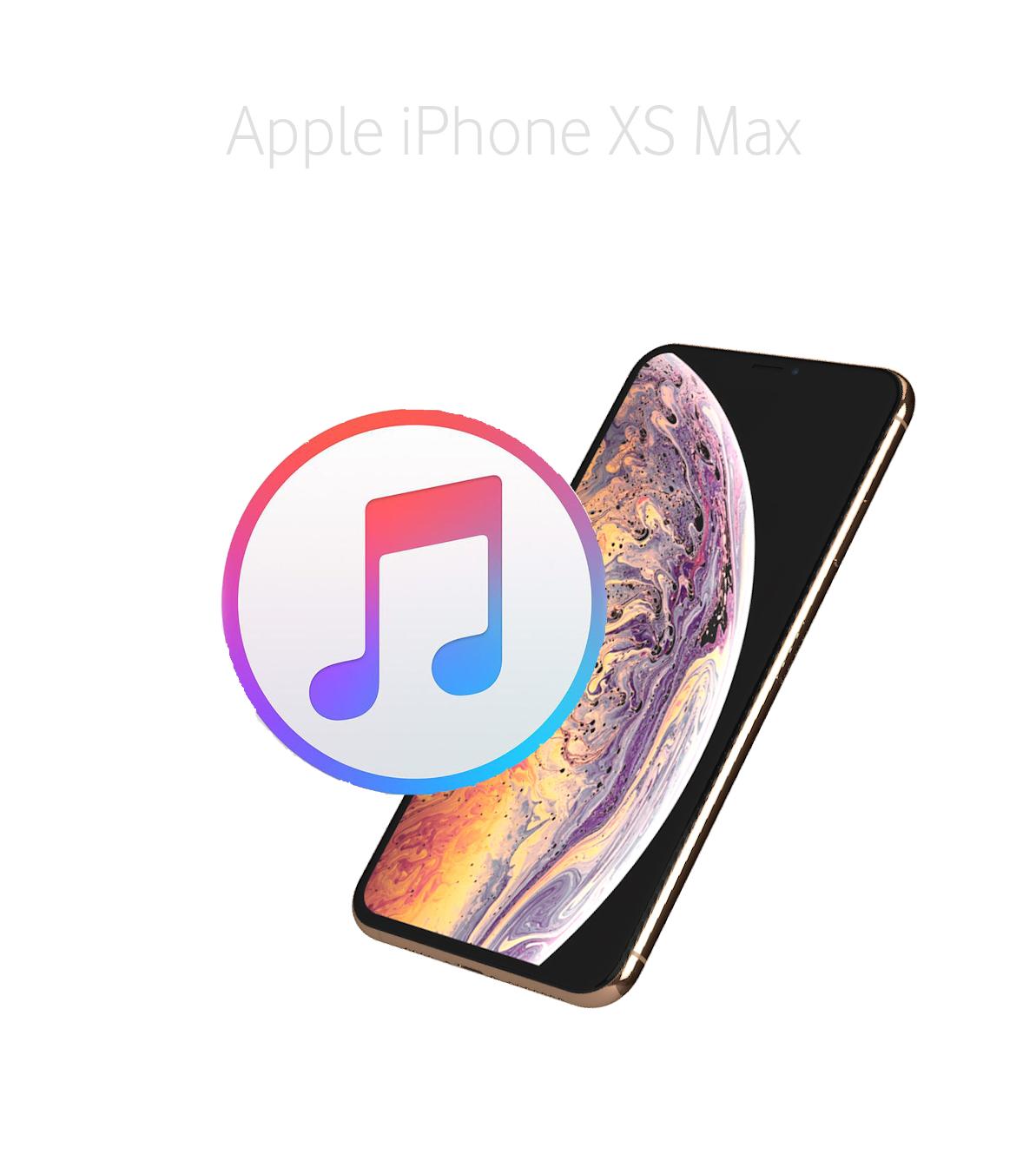 Mjukvara/Återställa iPhone Xs Max