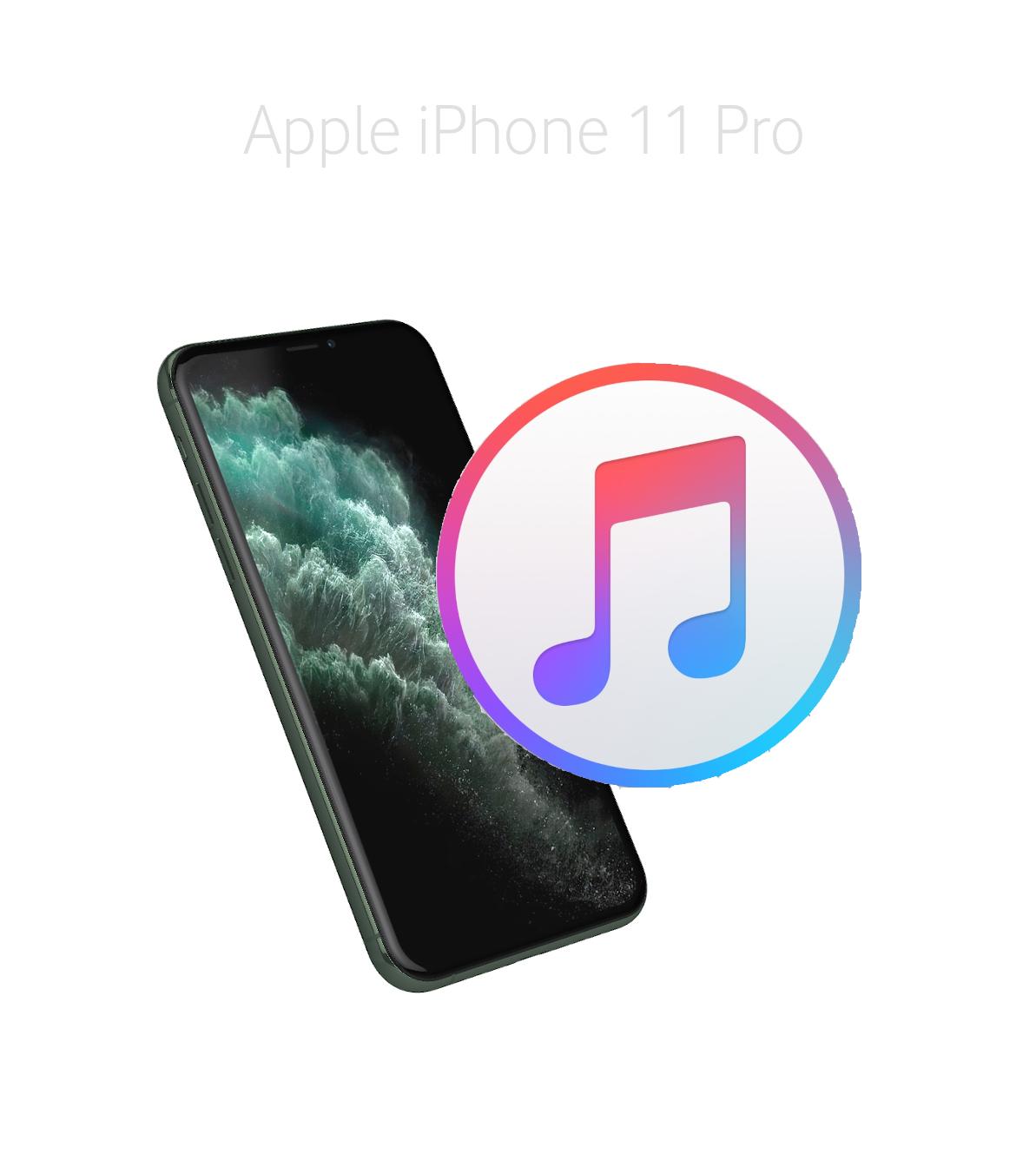 Mjukvara/Återställa iPhone 11 Pro